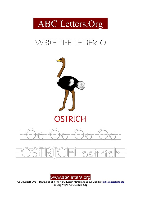 Ostrich Letter O Picture Writing Worksheet