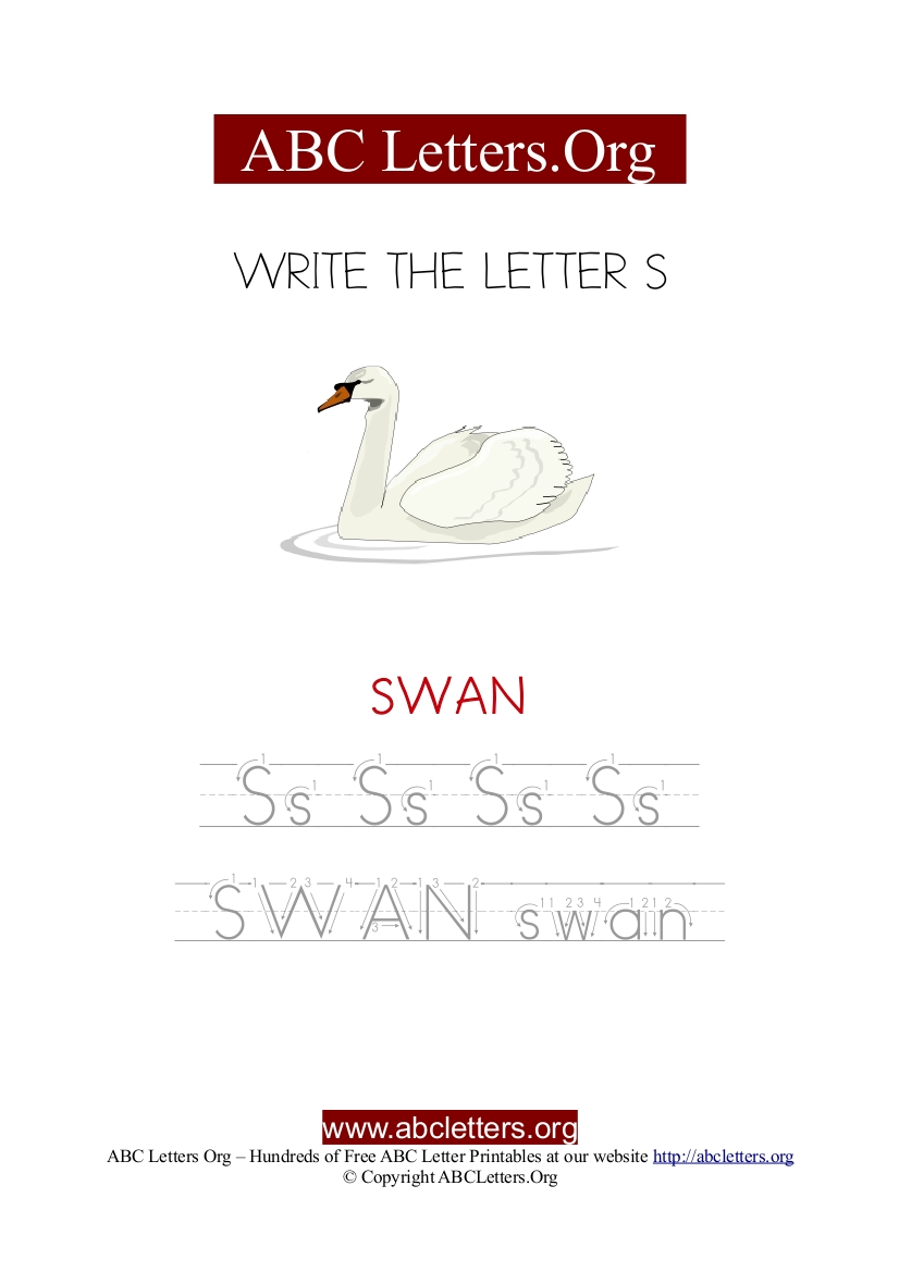 Swan Letter S Picture Writing Worksheet