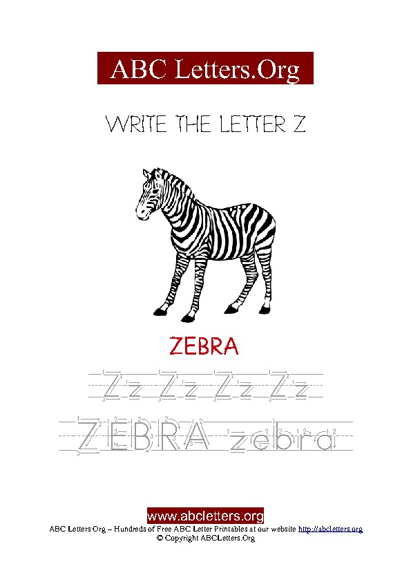 Zebra Letter Z Picture Writing Worksheet